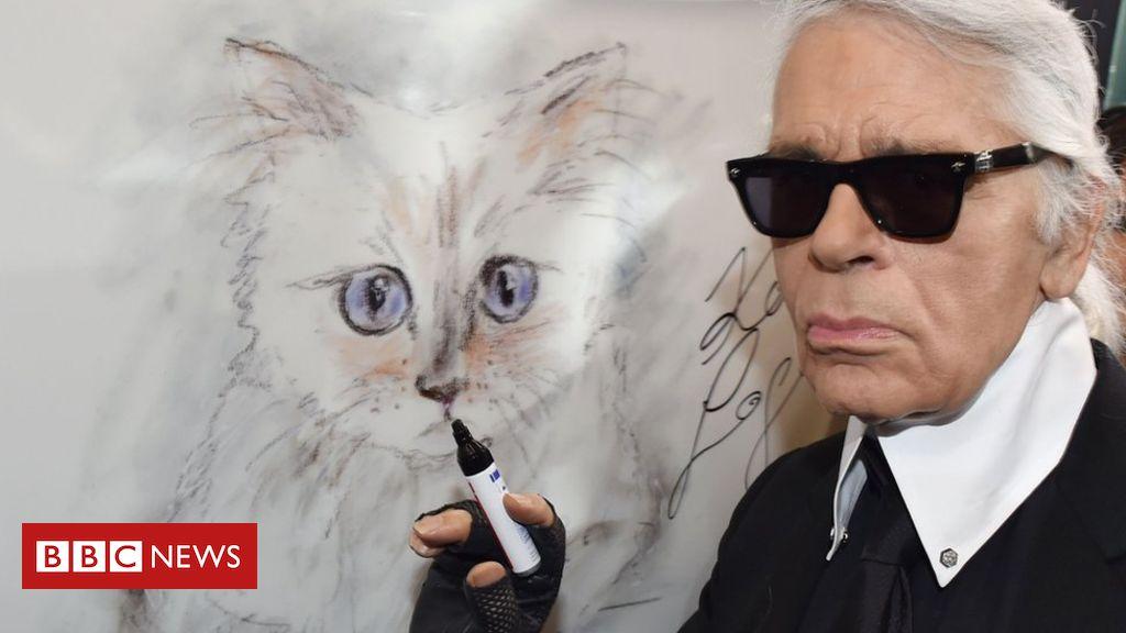 105722383 mediaitem105722382 - Karl Lagerfeld: Designer's cat Choupette 'named in his will'
