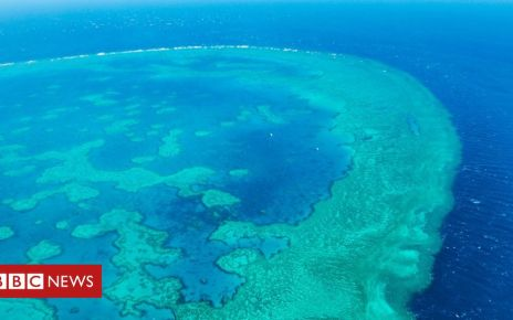 105749675 gettyimages 971880842 - Great Barrier Reef: One million tonnes of sludge to be dumped