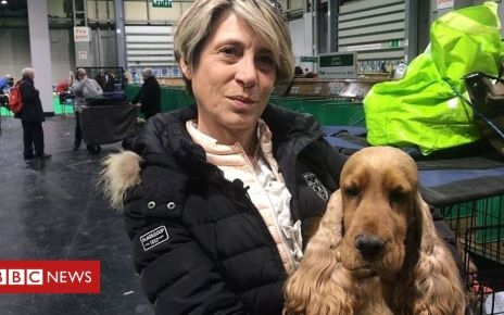105952773 p0730969 - Crufts: How will the dog show be affected by Brexit?