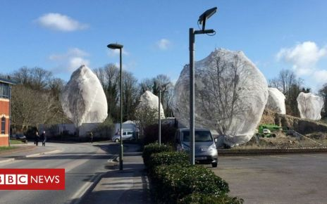 105990276 capture4 - Netting to stop birds nesting: Call for new safeguards