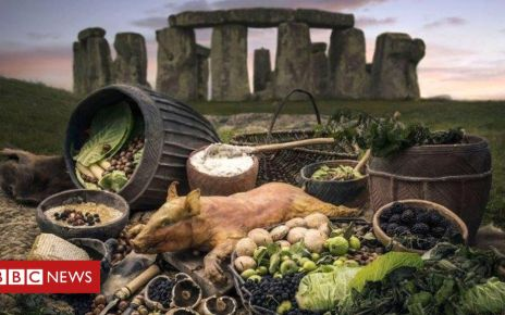 106005412 stonehengebig - Stonehenge was 'hub for Britain's earliest mass parties'