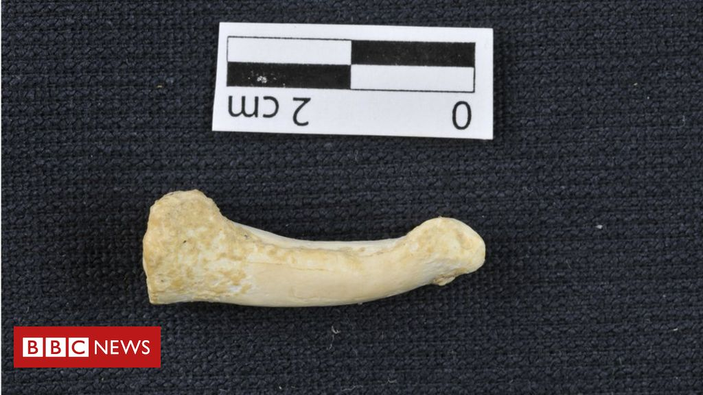 106402574 mediaitem106398643 - New human species found in Philippines