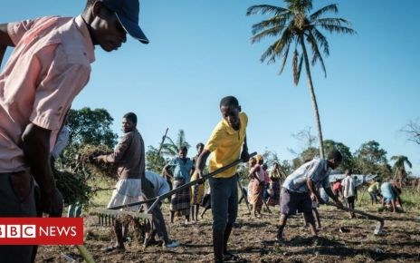 106411957 gettyimages 1132636819 - Will AI kill developing world growth?