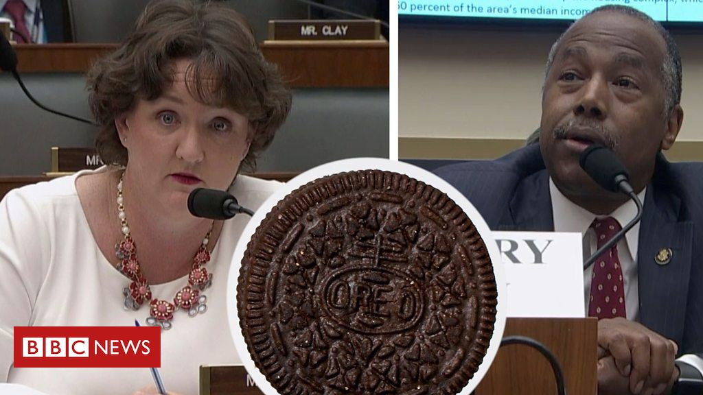 107055960 p079y7df - REO or Oreo? Ben Carson mistakes housing term for cookie