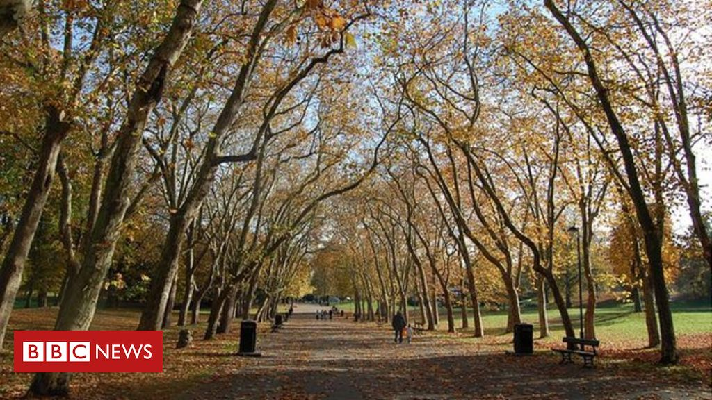 107094758 b397138a 8a41 42dc 924d 258a5f17b54a - Study: Millions lack access to green spaces