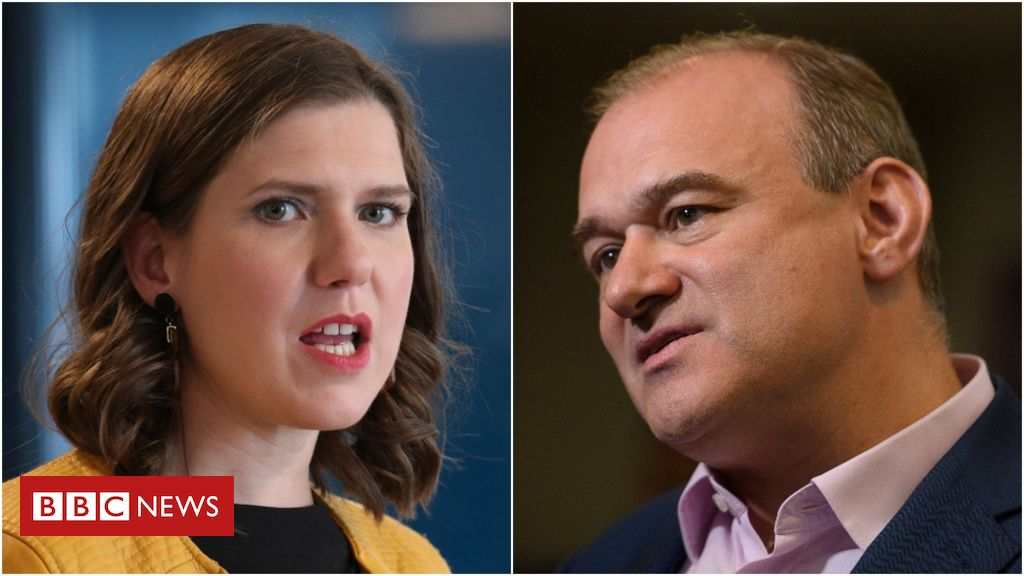 107548996 swinsondavey - Lib Dem leadership: Sir Vince Cable's replacement to be announced