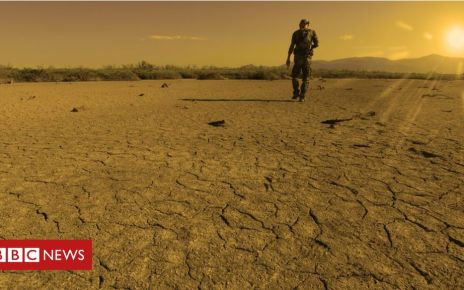 108146596 gettyimages 838533522 - Climate change: July 'marginally' warmest month on record