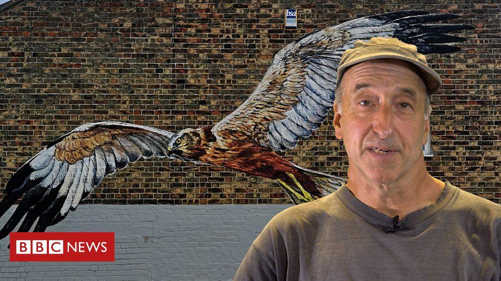 108262408 p07k7f90 - Giant Lowestoft street art paintings to celebrate wildlife
