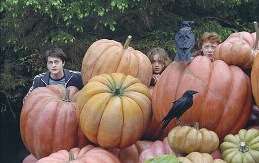 Harry Potter et le prisonnier d'Azkaban (Alfonso Cuaron)