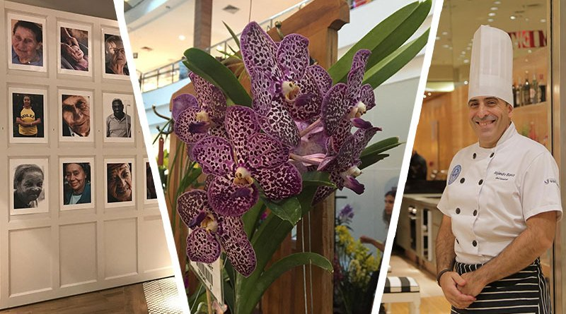 Estácio, Festival de Orquídeas, Espaço Gourmet, Exposição fotográfica, Abbraccio, Oficina de Empreendedoras e Internacionalização do Aeroporto