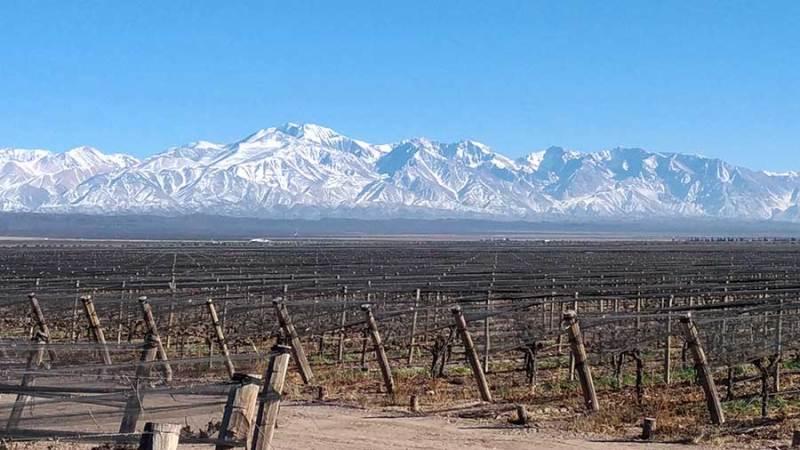 Vista cordilheira dos Andes em Mendoza, Pulenta Estate