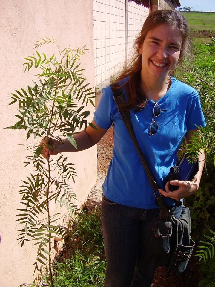 A engenheira florestal, Érica Camargo, diz que os ipês proporcionam inúmeros benefícios ambientais