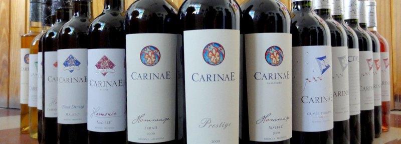 toda linha de vinhos carinae mendoza