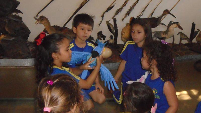 Interação com os animais do Museu de História Natural de Cravinhos chamou atenção dos alunos do Colégio Apoena