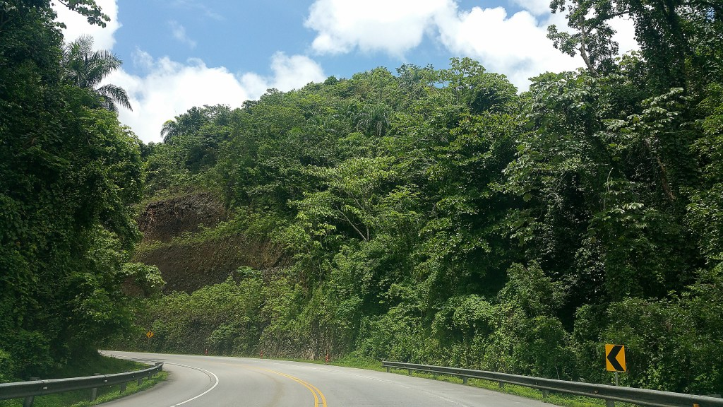 Verdant winding road in northeastern Dominican Republic