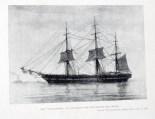 northfleet-illustration