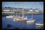 Alan Buchanan, ceilidh of fife, fife, idle duck, maurice griffiths, phakoe, River Tay, scoter