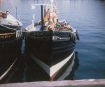 zulu, fishing boat, violet, vesper, stephen