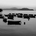 Matthew Atkin's photos of Hong Kong