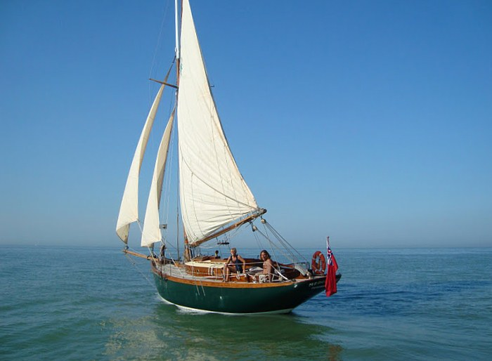 Does anyone know the story of gaff rigged cutter Medusa ...