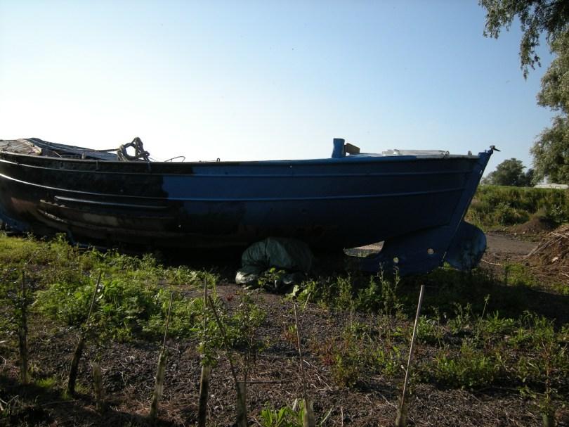 Watson class lifeboat 8