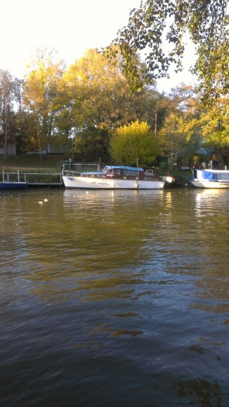 Boats on the Medway at Allington 13