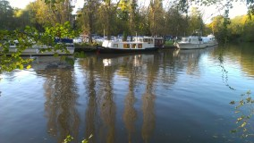 Boats on the Medway at Allington 15