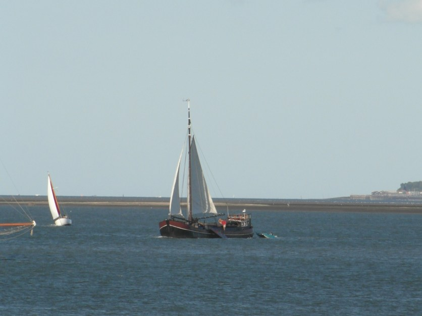 Swale match 2013 36 Dutch sailing barge