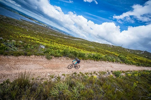 Mountain bikers in action during stage one of the Wines2Whales Adventure. Photo: Tobias Ginsberg