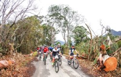 A group of riders in action on stage one of the Storms River Traverse.