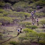 Action at the iSimangaliso MTB 4 Day