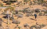 An image of a rider stopping on route to take a photo of his bike during the second day of the Namaqua Quest MTB Stage Race.