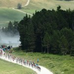 The peloton in action during stage 10 of the Tour de France