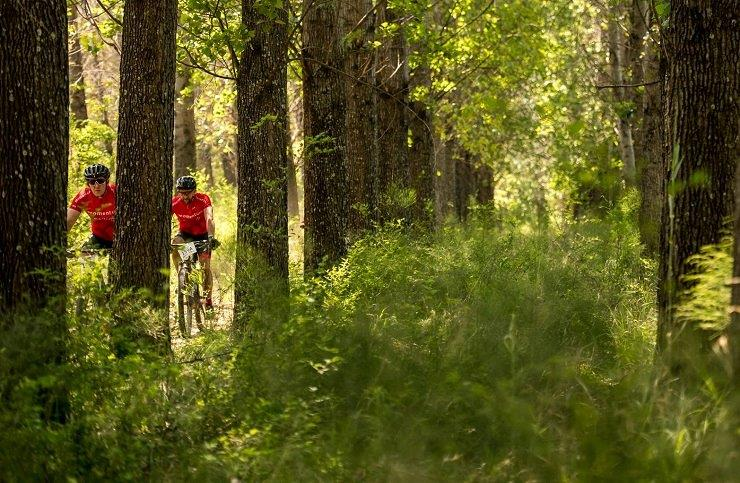 Riders moving through a forest section during stage one of the Berg and Bush 'Great Trek'. Photo: Em Gatland