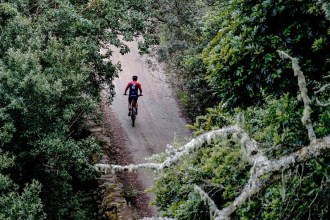 An overhead shot of a rider moving through a section shadowed by trees during the TransCape MTB Encounter. Photo: Jacques Marais