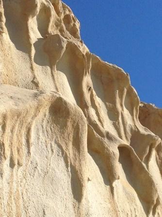 Limestone Cliffs, Torrey Pines Natural Reserve, CA