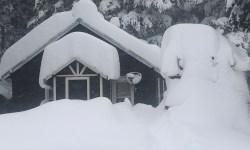 Historic September Snowstorm Montana