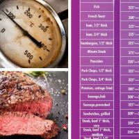 Electric Skillet Temperature Guide
