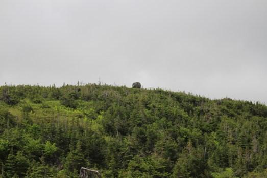 Stein auf dem Hügel