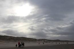 Nationaal Park Zuid-Kennemerland – Strand
