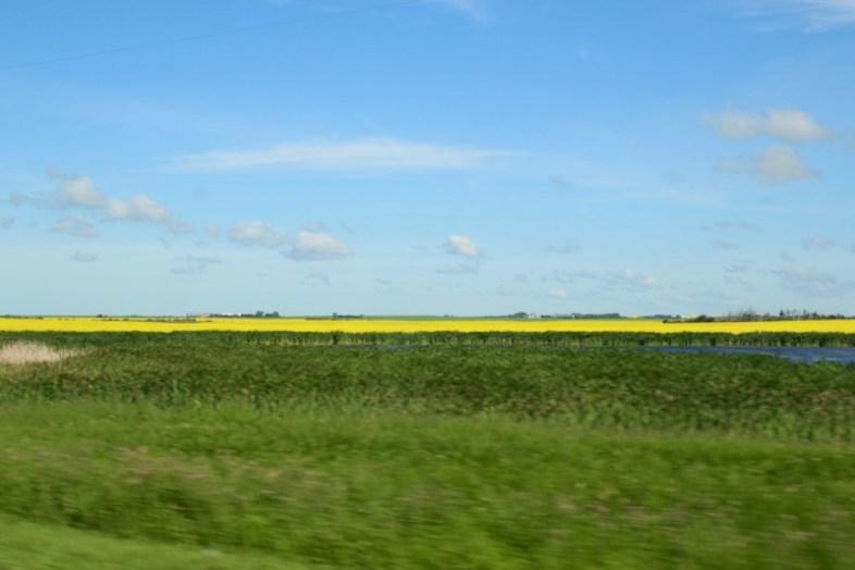 taundma-reisen-kanada-saskatchewan-farm-1