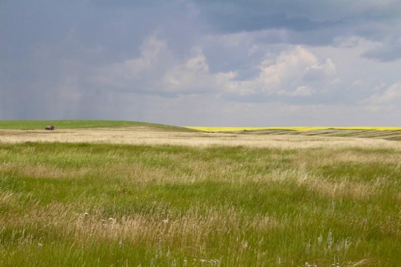 taundma-reisen-kanada-saskatchewan-farm-15
