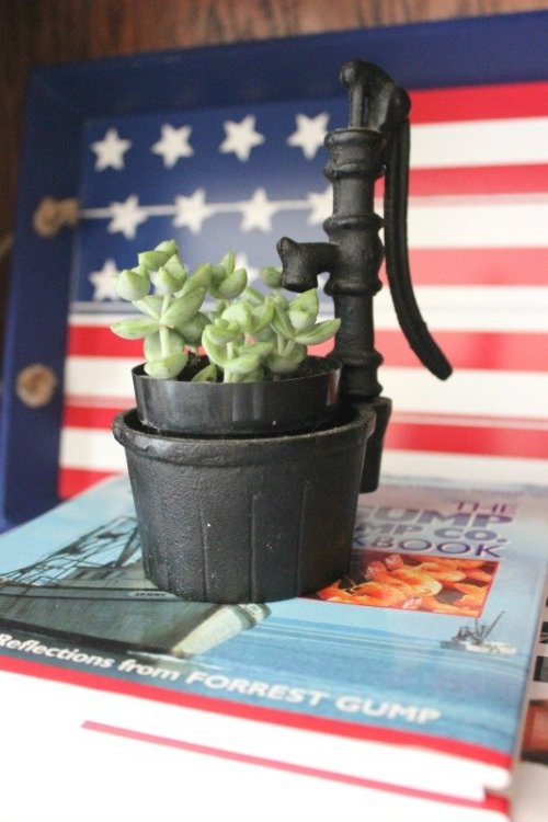 American Flag Tray used as artwork and backdrop for mini succulent plant