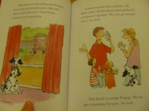 page example from a childrens early reader book about pirate dog