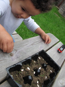 toddler picking sunflower seeds developing fine motor skills pincer grip