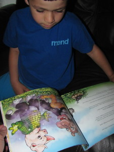 boy reading anagranimals book