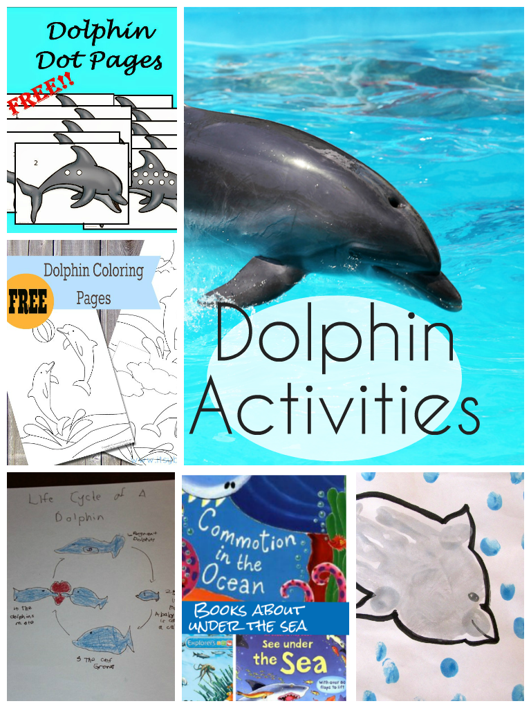 Dolphin activities for kids in the playroom dolphin activities and printables for kids plus recommendations for under the sea themed books voltagebd Images