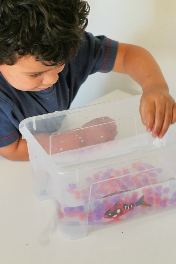 Waterbeads and fish sensory play water play activity for kids