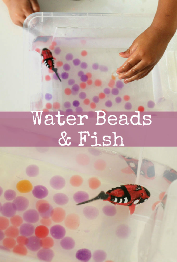Sensory play with water beads and fish (using robo fish)