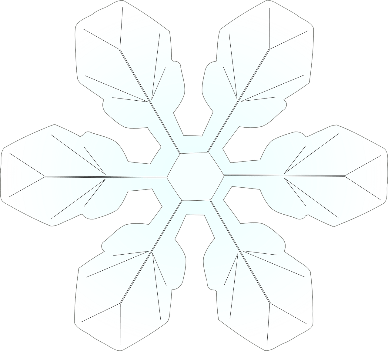 This is an image of Modest Snow Flake Print Outs